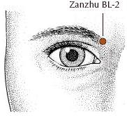 Zhan Zu